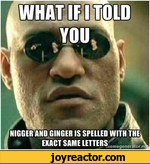 what if I told you nigger and ginger is spelled with the exact same letters