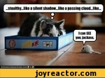 stealthy ...like a silent shadowJike a passing cloud ...like l can see you, jackass.