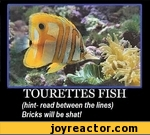 TOURETTES FISH (hint- read between the lines) Bricks will be shat!