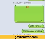 Wait for it Princess of whales