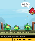 the angry birds discovered laxatives